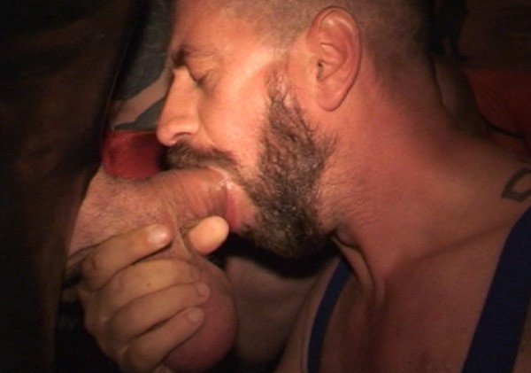 Gay Massage Rotterdam  Vindennl